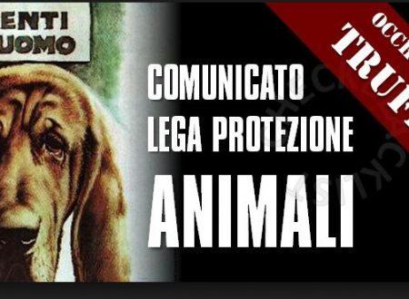 Ispettore protezione animali