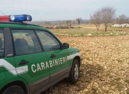 Carabiniere e indovinelli – Barzelletta