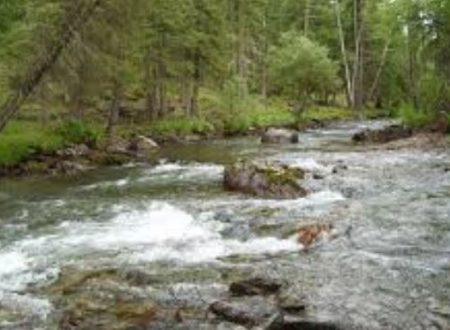 Acqua avvelenata – Leghista e meridionale