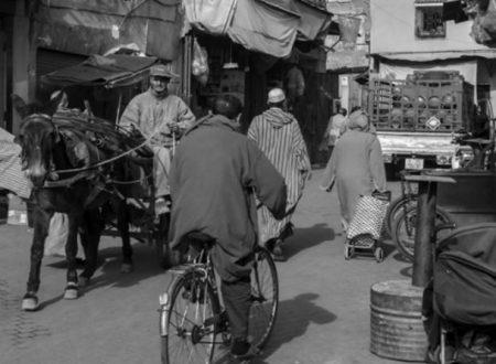 Dove si trova il Marocco ? – Barzelletta