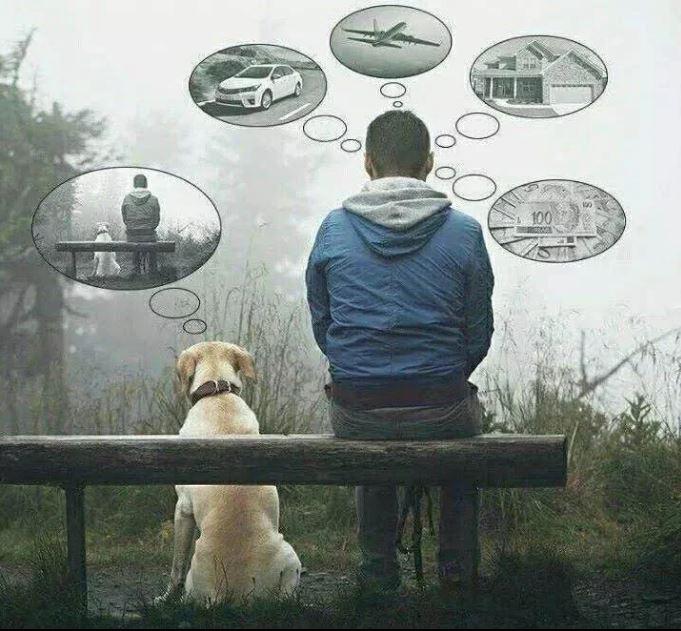 Dipende dai punti di vista