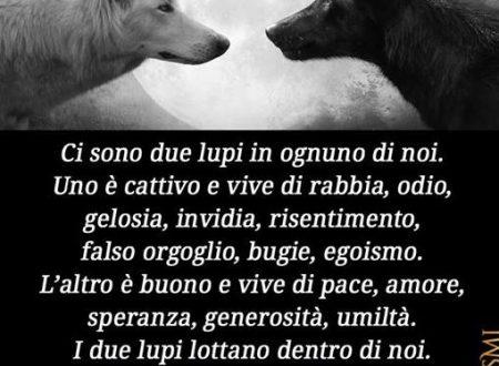Ci sono due lupi in ognuno …